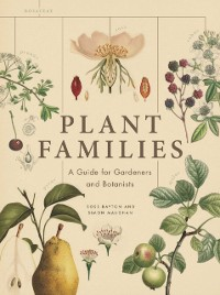 Cover Plant Families