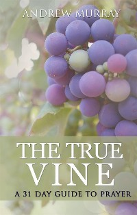 Cover The True Vine: a 31 day guide to prayer