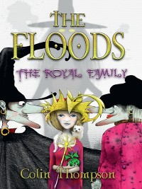 Cover Floods 13