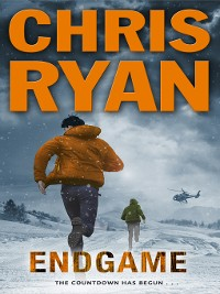 Cover Endgame