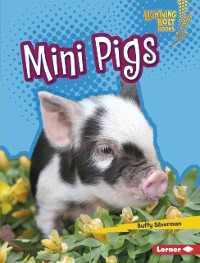 Cover Mini Pigs