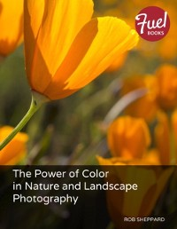 Cover Power of Color in Nature and Landscape Photography, The