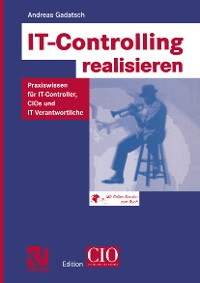 Cover IT-Controlling realisieren