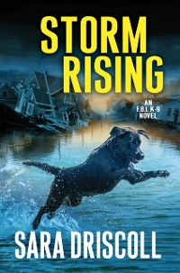 Cover Storm Rising