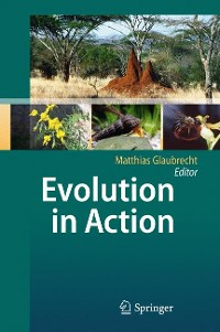Cover Evolution in Action