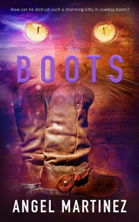 Cover Boots