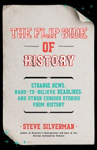 Cover The Flip Side of History