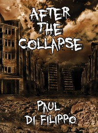 Cover After the Collapse