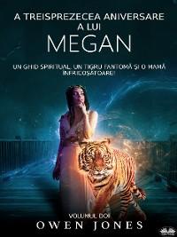 Cover A Treisprezecea Aniversare A Lui Megan