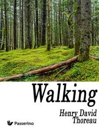 Cover Walking