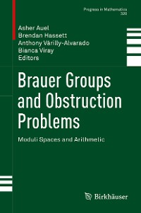 Cover Brauer Groups and Obstruction Problems