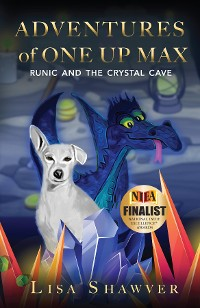 Cover Adventures Of One Up Max