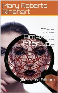 Cover The Amazing Interlude