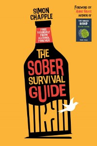 Cover The Sober Survival Guide