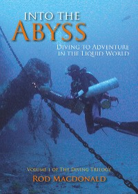 Cover Into the Abyss