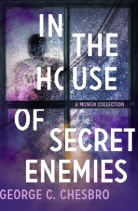 Cover In the House of Secret Enemies