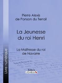 Cover La Maîtresse du roi de Navarre