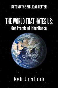 Cover Beyond the Biblical Letter The World that Hates Us