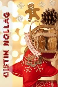 Cover Cistin Nollag