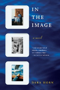 Cover In the Image: A Novel