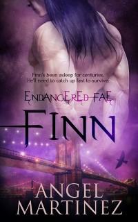 Cover Finn