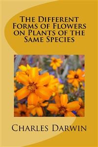 Cover The Different Forms of Flowers on Plants of the Same Species