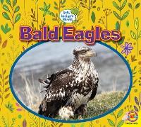 Cover Bald Eagles