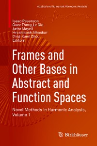 Cover Frames and Other Bases in Abstract and Function Spaces