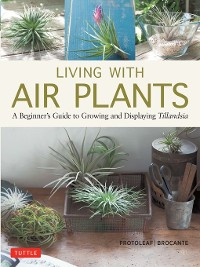 Cover Living with Air Plants
