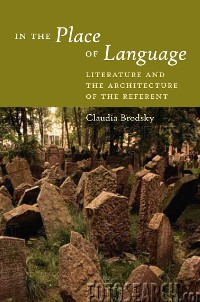 Cover In the Place of Language