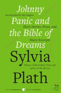 Cover Johnny Panic and the Bible of Dreams
