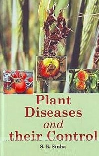 Cover Plant Diseases And Their Control
