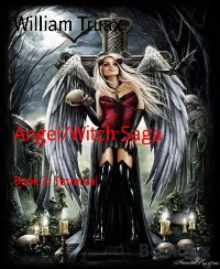 Cover Angel/Witch Saga