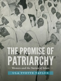 Cover The Promise of Patriarchy