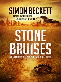 Cover Stone Bruises