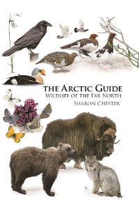 Cover The Arctic Guide