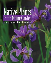 Cover Native Plants for Your Maine Garden
