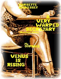 Cover A Very Warped Secretary (Illustrated Edition) - Venus Is Rising