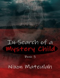 Cover In Search of a Mystery Child Book 3