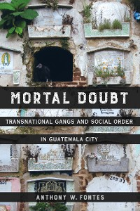 Cover Mortal Doubt