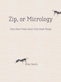 Cover Zip, or Micrology