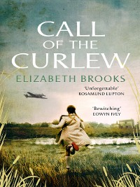 Cover Call of the Curlew