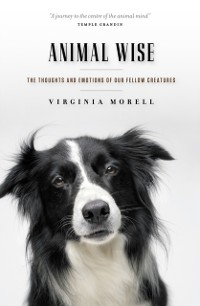 Cover Animal Wise