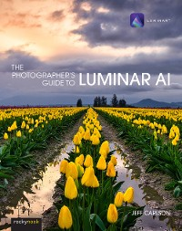 Cover The Photographer's Guide to Luminar AI
