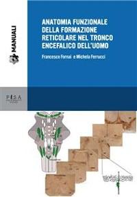 Cover Anatomia funzionale della formazione reticolare nel tronco encefalico dell'uomo
