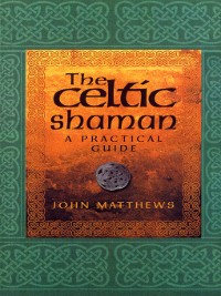 Cover The Celtic Shaman