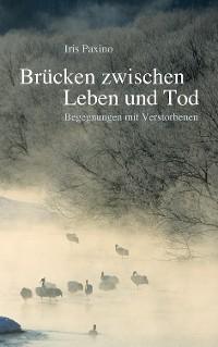 Cover Brücken zwischen Leben und Tod