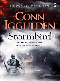 Cover Stormbird