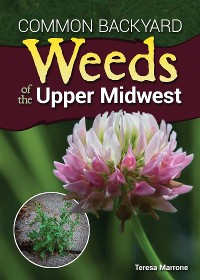 Cover Common Backyard Weeds of the Upper Midwest