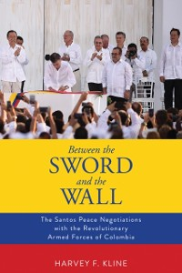 Cover Between the Sword and the Wall